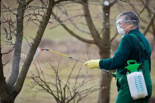 pesticides classement