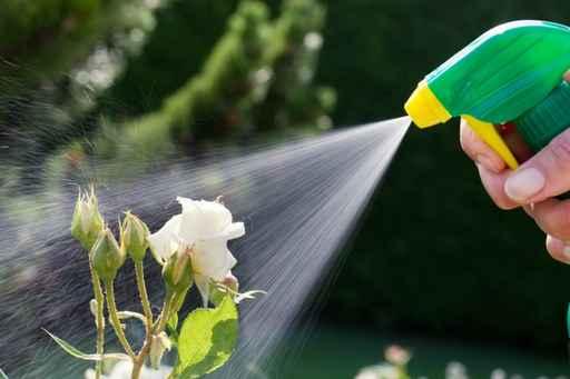 pesticides senat