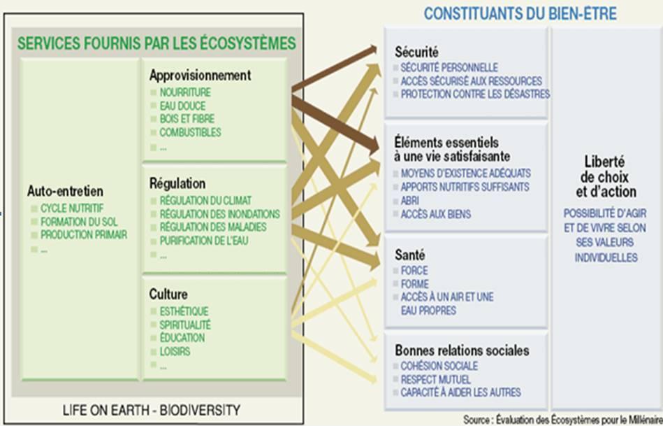 evaluation_ecosysteme
